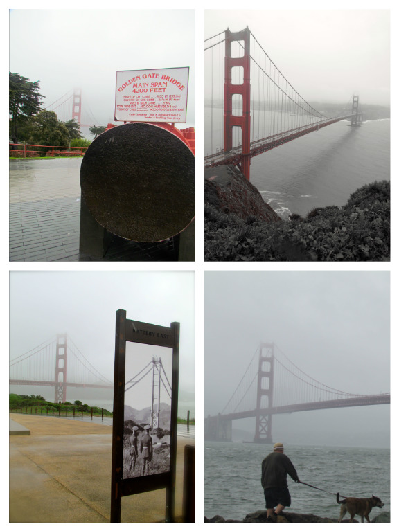 bridge collage 4